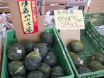 hanayaka_kabo_ishi_tuka.jpg