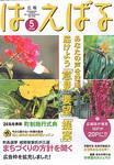 kouhou_haebaru05_top.jpg