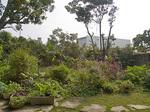 garden_yasai.jpg